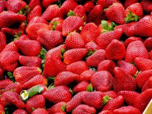 Muchas fresas