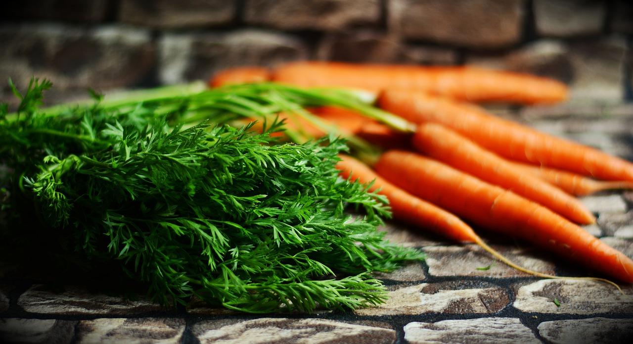 Zanahoria: La hortaliza naranja que se esconde en nuestro jardín