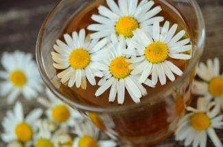 Infusión con flores de manzanilla