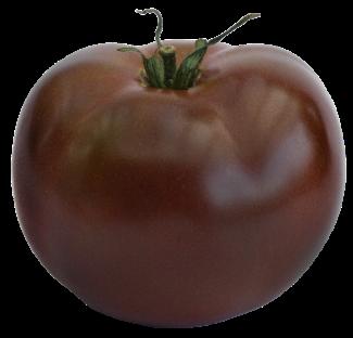 Macro de tomate índigo